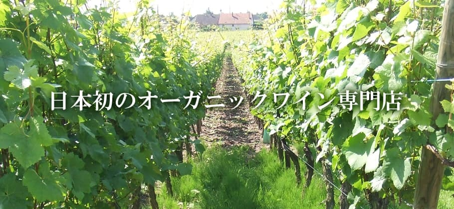 日本初のオーガニックワイン専門店マヴィ|MAVIE
