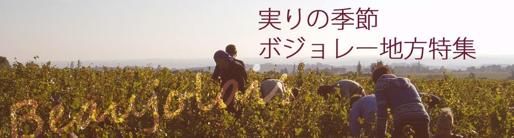 収穫の季節、ボジョレーワイン