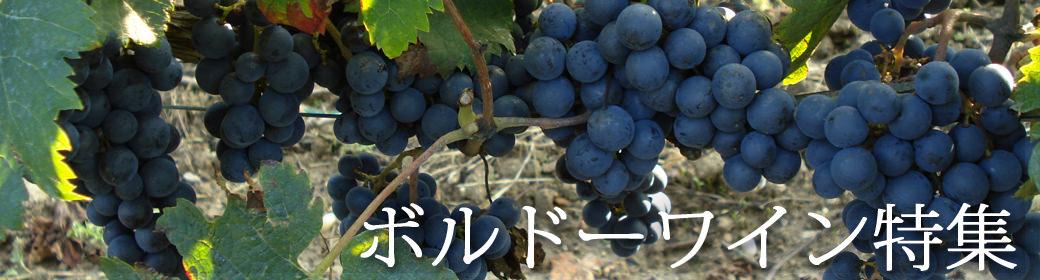 ボルドー ワイン特集