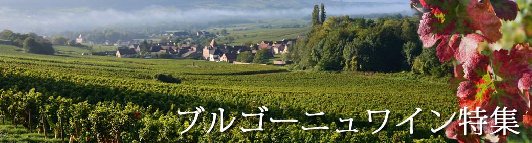 ブルゴーニュ ワイン特集