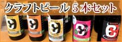 オーガニッククラフトビール5本セット