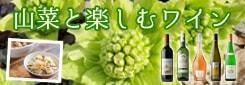 山菜に合うワイン2021
