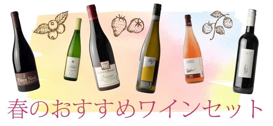 春のおすすめワインセット