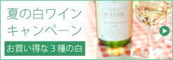 夏の白ワイン特集