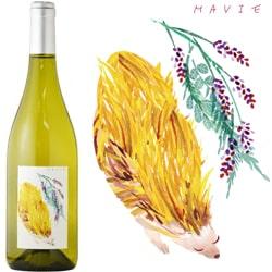 創立22周年記念の白ワイン画像