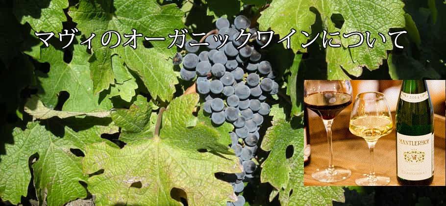 オーガニックワインとは