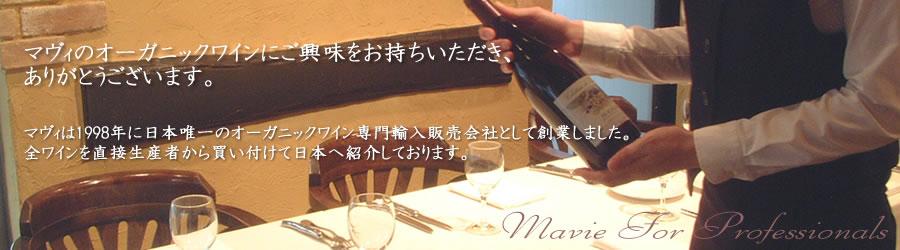 マヴィ飲食店様限定サービスのご案内