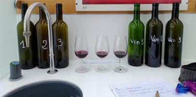 Le Gout Du Vin-塩澤悠ブログの読み物コンテンツ
