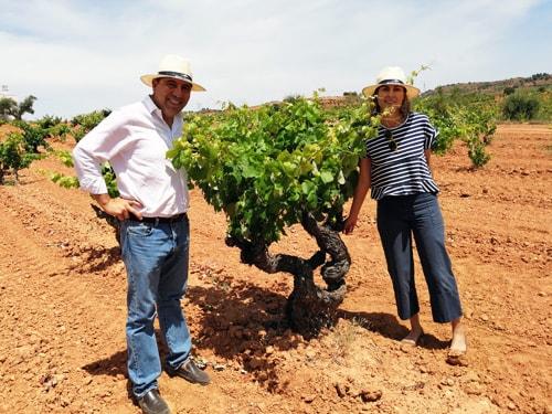 コティーノ夫妻と樹齢100年以上のボバル